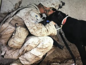 Ground soldier with dog