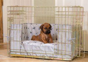 Luxury Dog Cage