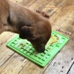 Lick Mat For Dogs